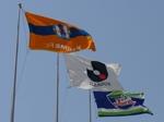 ニンスタに掲げられたヴォルティスの旗